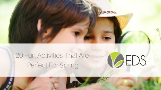 20 fun activities that are perfect for spring blog post image